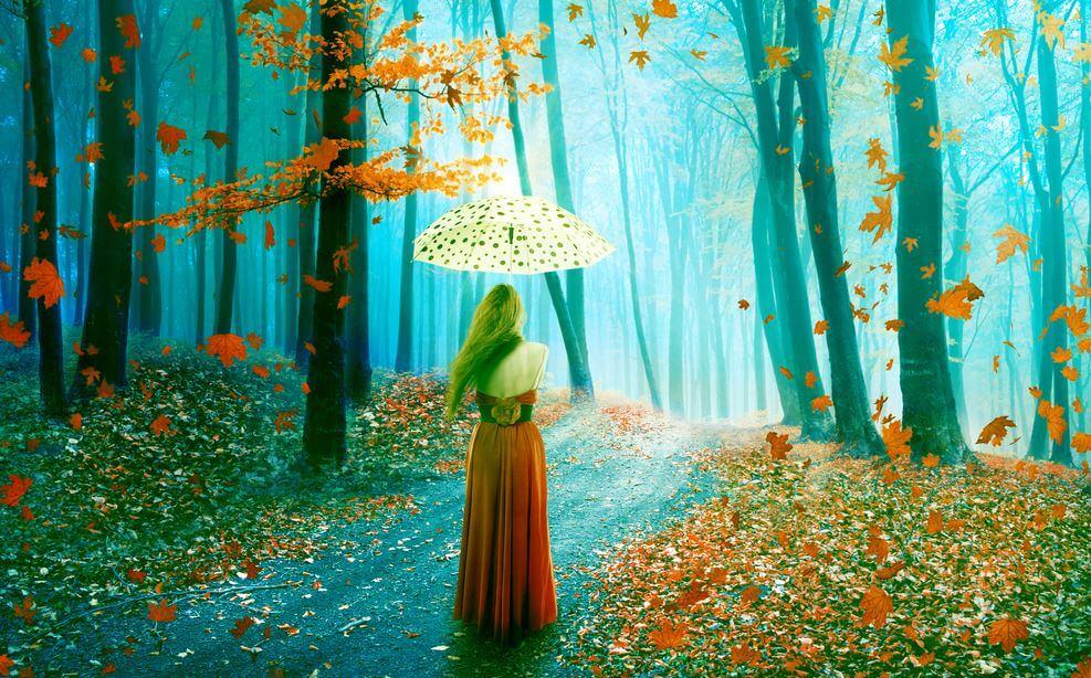 森にたたずむ傘を持った女性