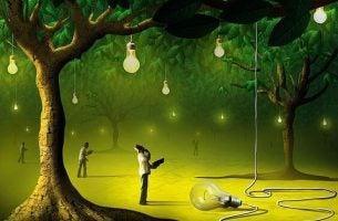 木にともる光