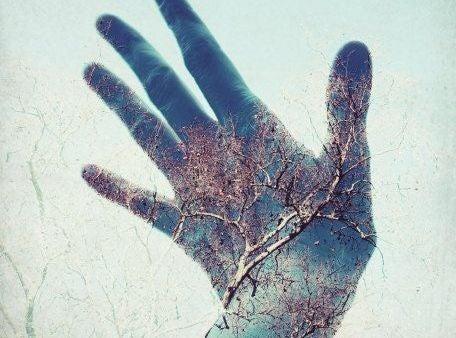 木を透かせてみせる手