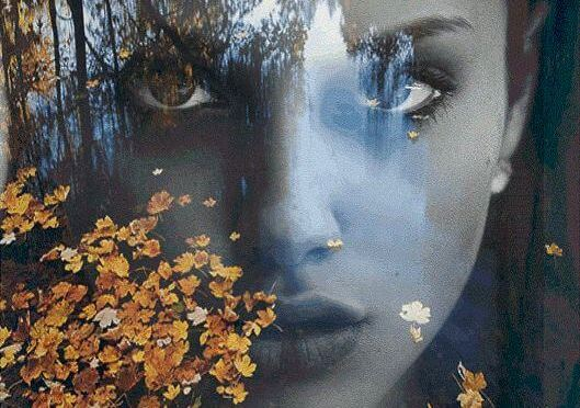 森の木々に浮かぶ女性の顔