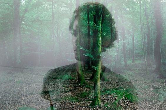 森に浮かぶ男性の影
