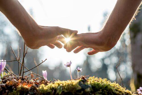 小さな花に手をかざす二人