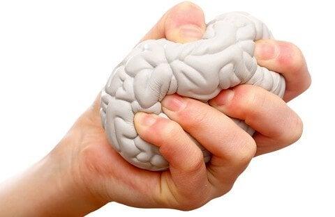 脳みそのストレスボール