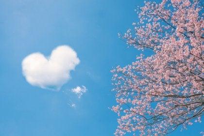 愛に関する中国のことわざ5選
