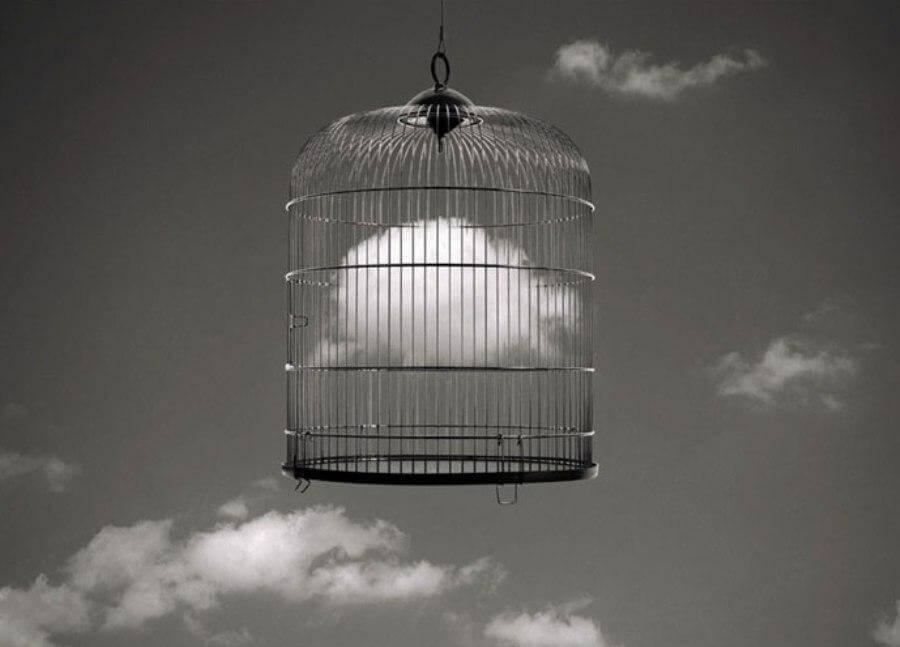 鳥籠の中の雲