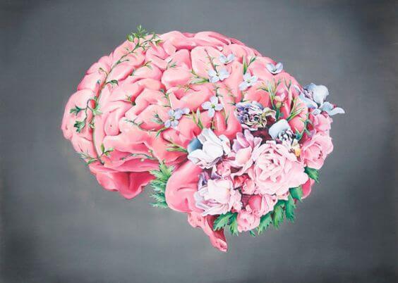 快楽の脳経路