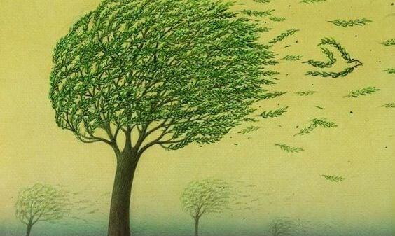 強い風に煽られる木