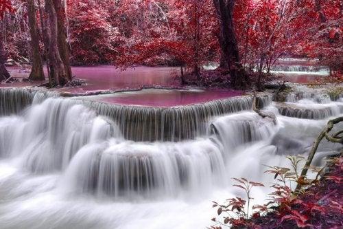 紅葉した森と滝