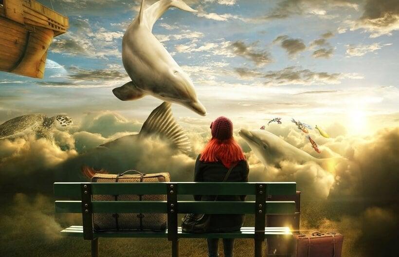 空を泳ぐイルカ