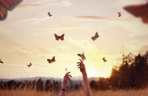 夕暮れの蝶に手を伸ばす