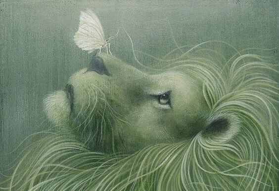 ライオンの花にとまる蝶
