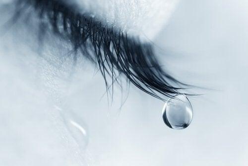 まつ毛の先につく涙