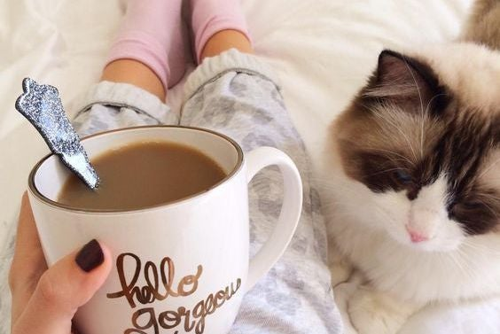 猫の横でコーヒーを飲む