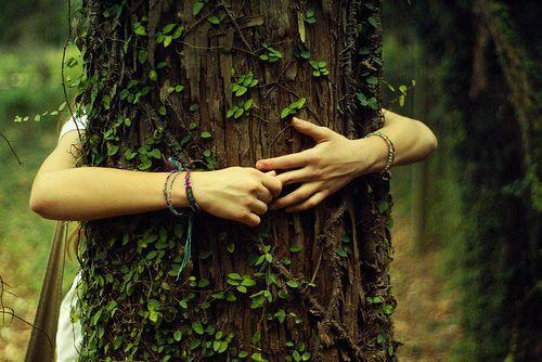 木をハグする
