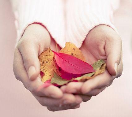 手の中の落ち葉