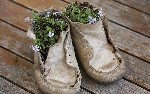 靴の植木鉢