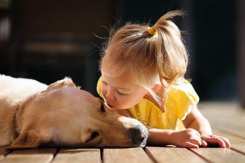 犬にキスする少女