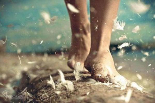 裸足の足と鳥の羽