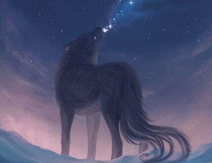 夜空に吠えるオオカミ