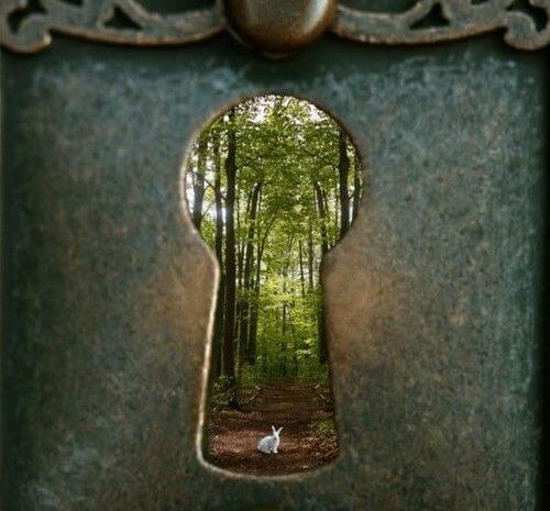 鍵穴から見えるウサギ