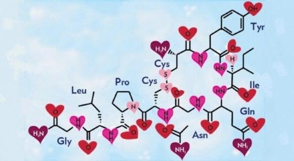 愛と幸せのホルモン:オキシトシン