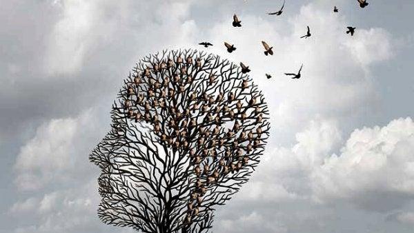 人の頭の形をした木