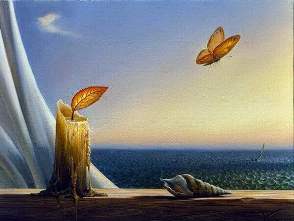 窓辺の蝶、ろうそく、巻貝