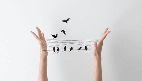 あやとりの電線に留まる鳥