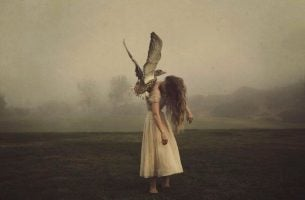 鳥に運ばれる少女