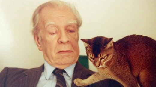 ボルヘスとネコ