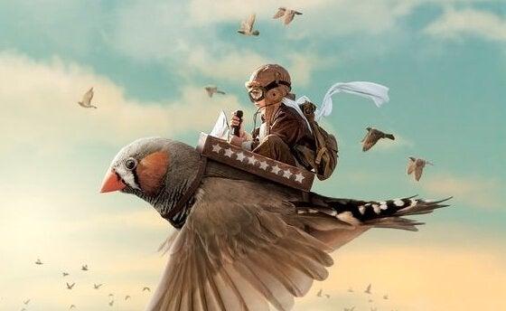 鳥に乗る少年パイロット
