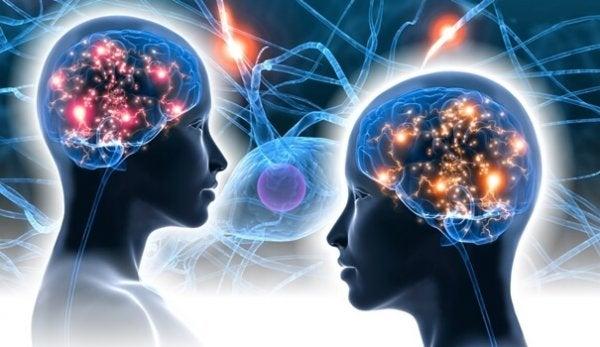二人の脳と神経