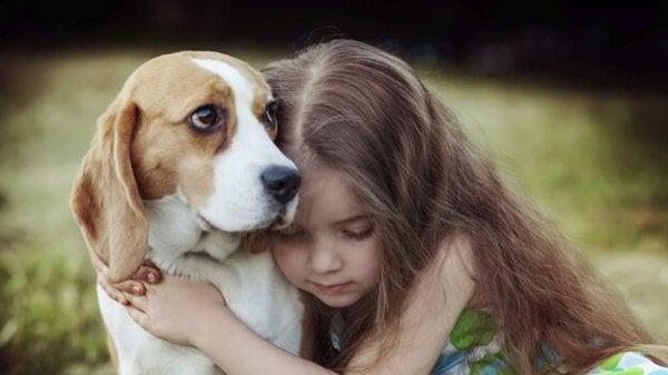 犬の共感力にある治癒の力