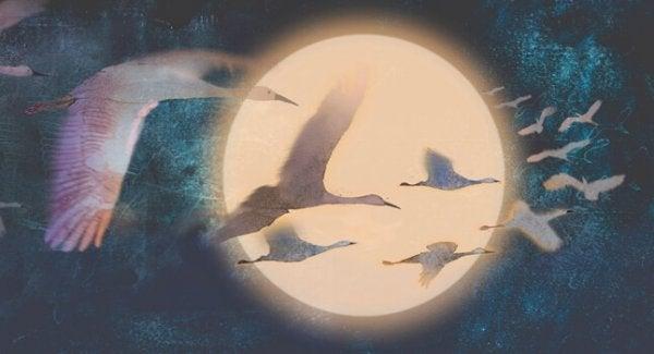 月夜を飛ぶ白鳥たち