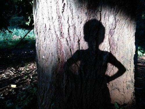 気に映る子供の影