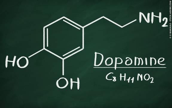 ドーパミンの役割