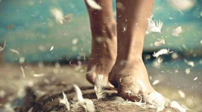 裸足の足と羽根