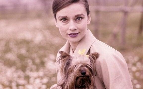 犬とオードリー・ヘップバーン