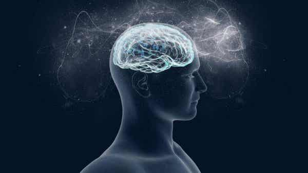 脳が愛する物質:マグネシウム