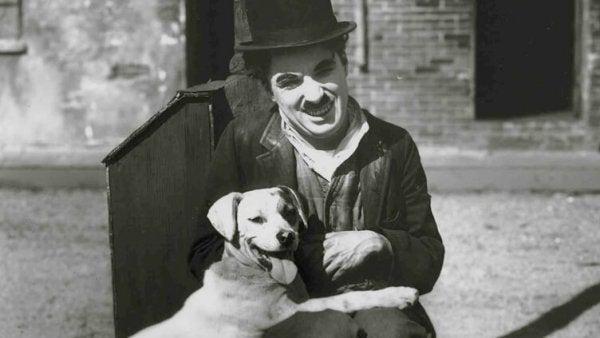 チャップリンと犬