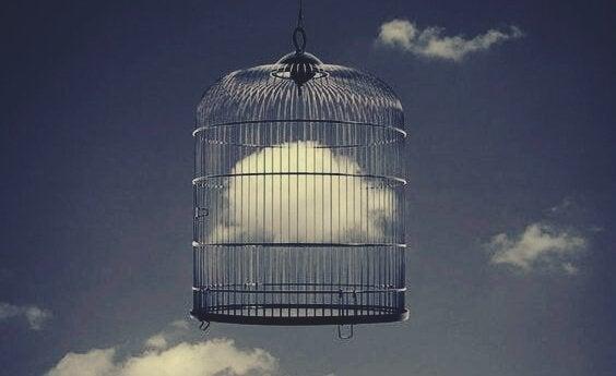 鳥かごの中の雲