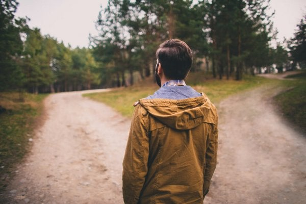 森の道の分岐点に立つ男の後ろ姿