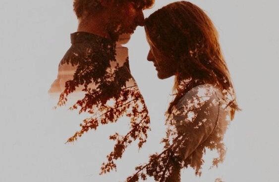 二人の影に映る森