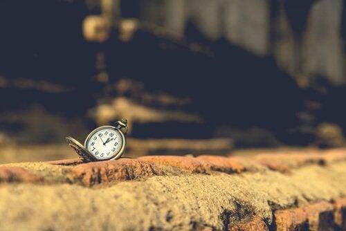 レンガの上にある懐中時計