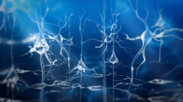 青いニューロン