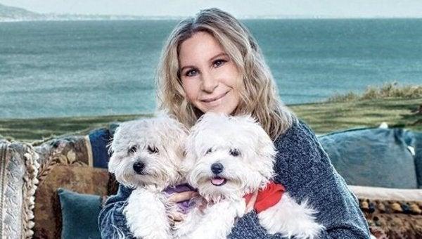バーバラと犬