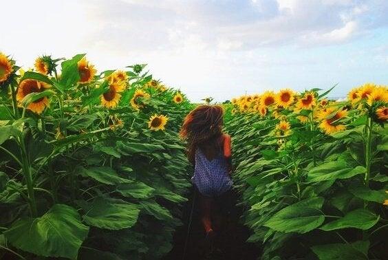 一生に一度だけ:忘れることのない5つの瞬間