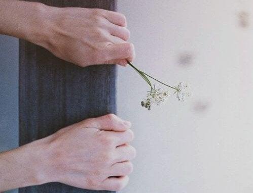 橋で花を掴む手