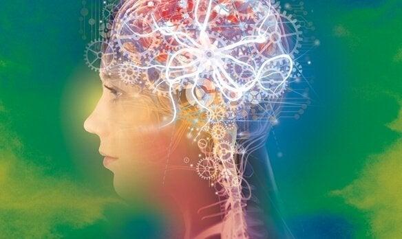 脳の中の歯車