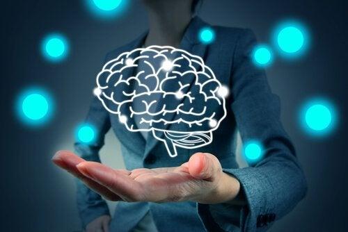 手のひらにある脳
